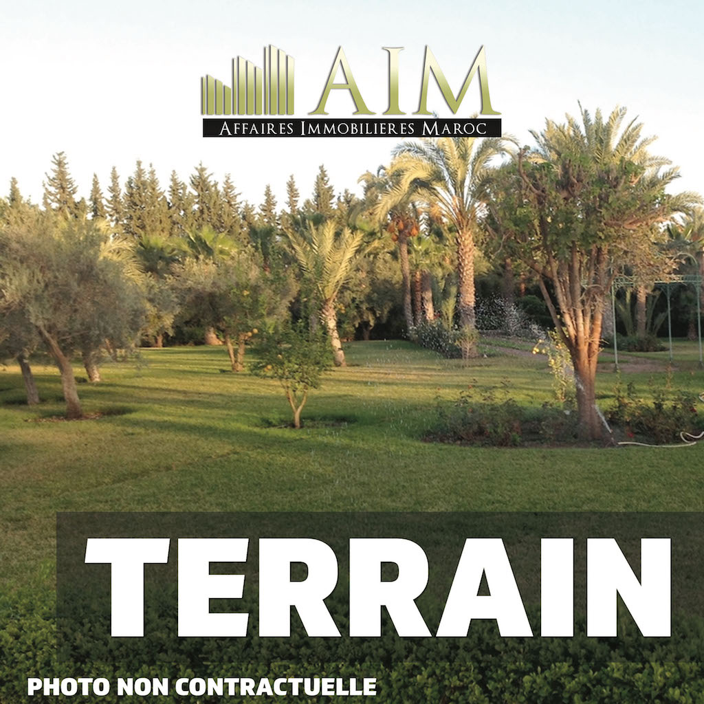 Aim web terrain